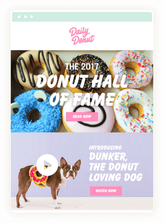 Daily Donut Email - Hall of Fame