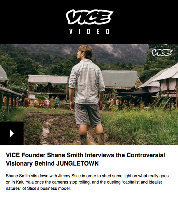 Email Engagement - Marketing Automation - Vice
