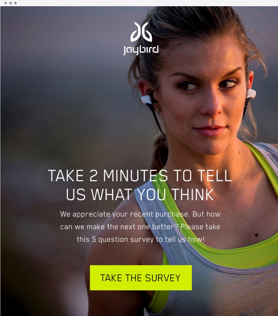 Email Marketing - Jaybird Survey Email